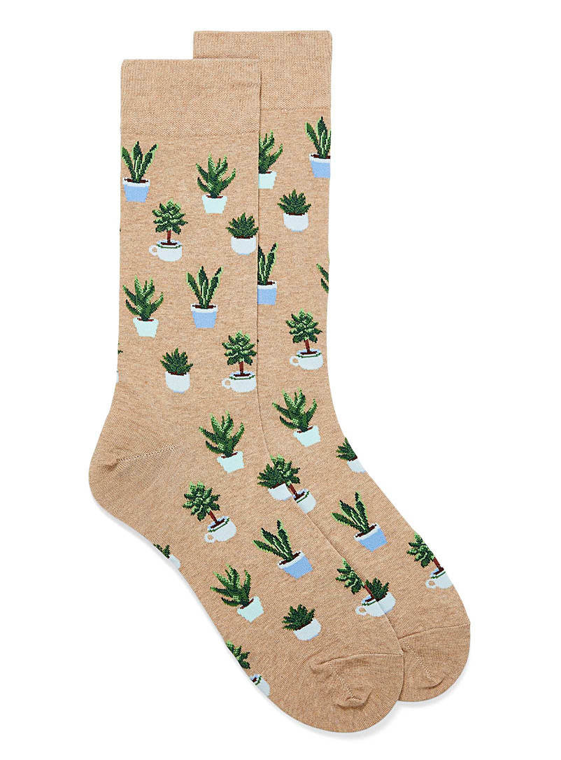 Hot Sox Light Brown Potted plant socks for men