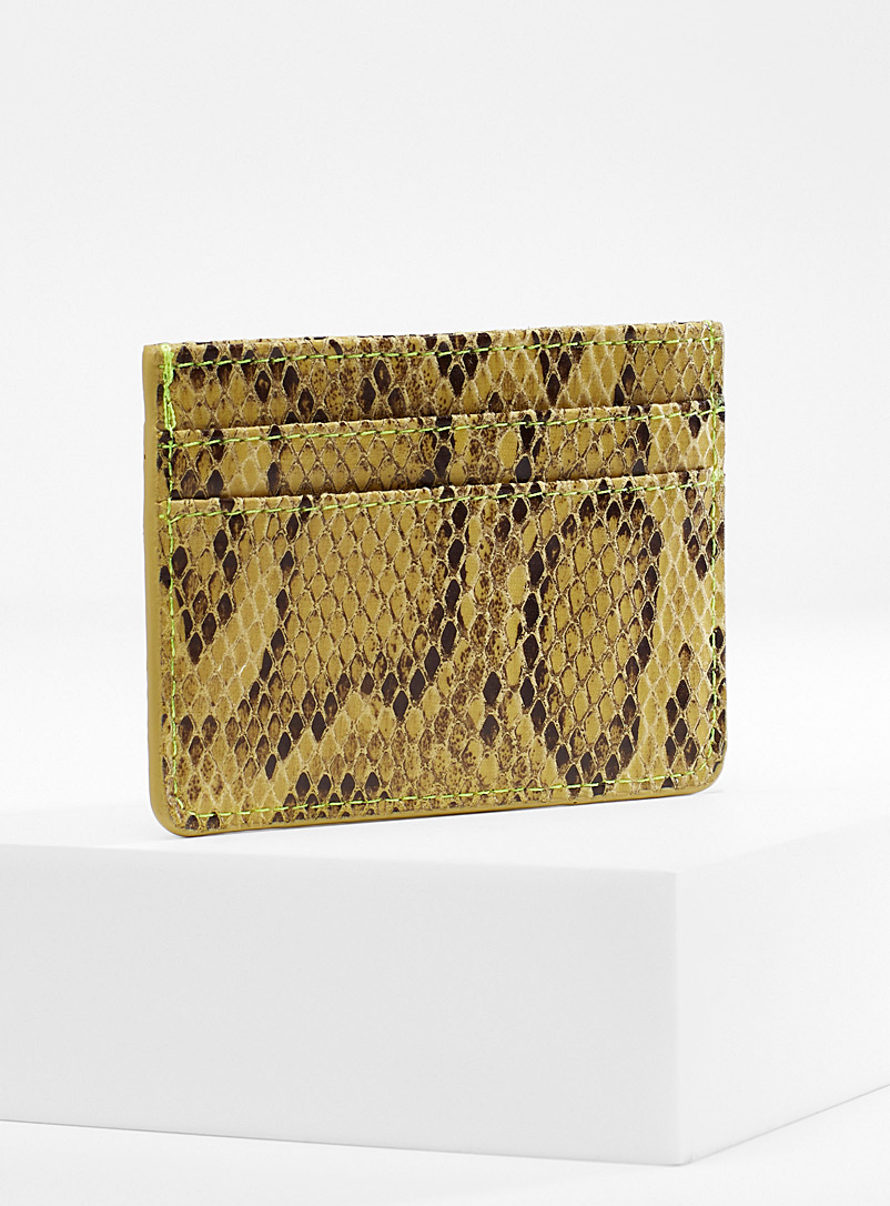 colourful-python-card-holder